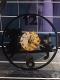 «Время вспять» (часы из виниловых пластинок), Детский музей, Полоцк. 2018 г.
